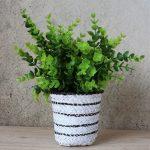 Black & White Basket Pot Planter
