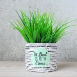 Black & White Terracotta Pot Planter