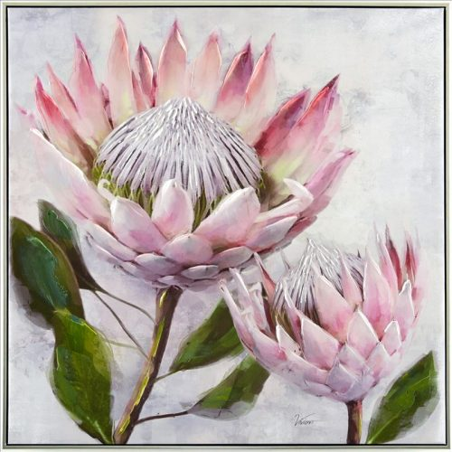 Pink Protea Flower Framed Canvas Print Wall Art