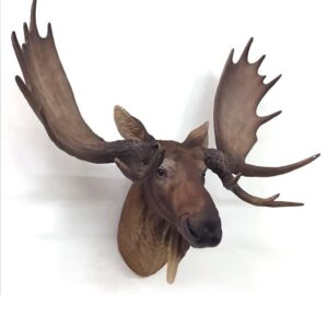 Wall Hanging Moose Deer Stag Head Resin Statue Figurine