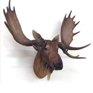 Wall Hanging Moose Deer Stag Head Resin Statue Figurine
