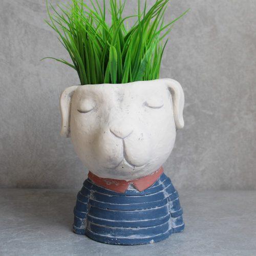 Dog In Blue Head Face Concrete Pot Planter
