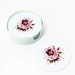 Pink Protea Flower Floral Drink Coasters - Set of 6