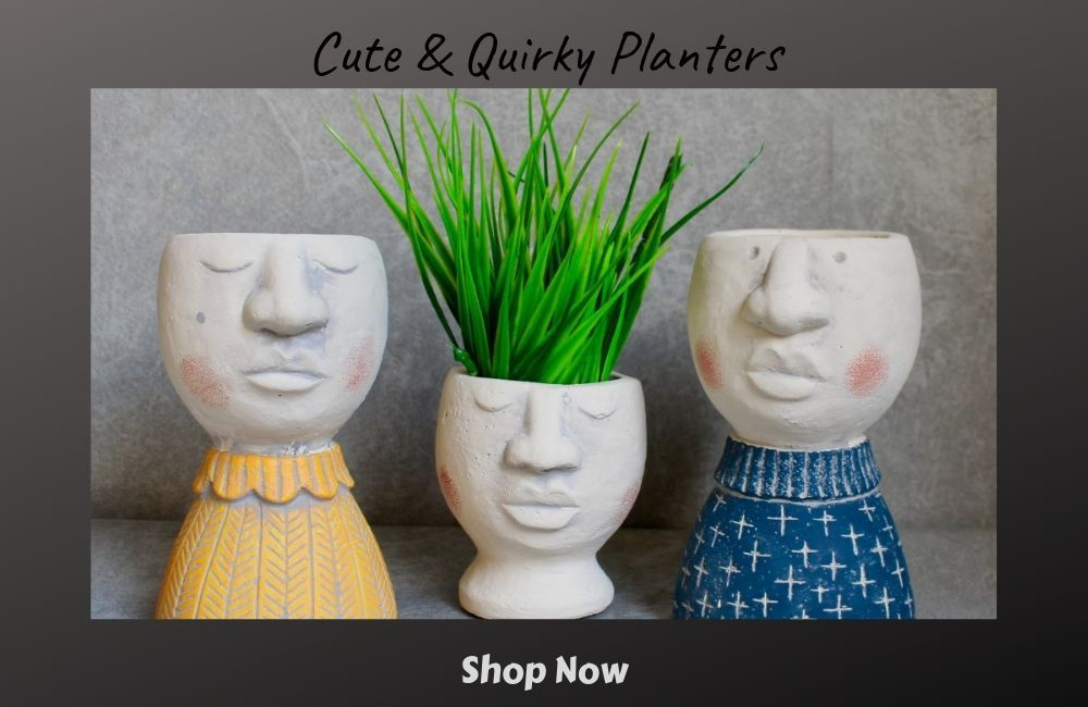 Dalisay Cute and Quirky Pot Planters