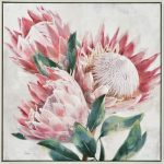 Pink Protea Flowers With Leaves Framed Canvas Print Wall Art