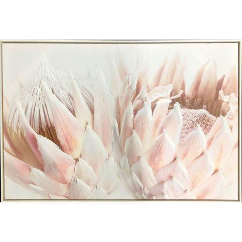 Blushing Protea Flower Framed Canvas Print Wall Art