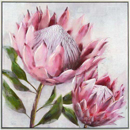 Pink Protea Flower Pair Framed Canvas Print Wall Art