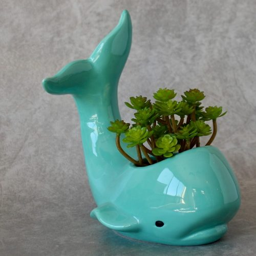 Ceramic Whale Planter Pot