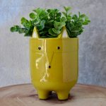 Green Fox Ceramic Pot Planter