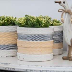 Yellow and Grey Cement Pot Planter