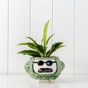 Hippy Face Ceramic Pot Planter On Legs - Green
