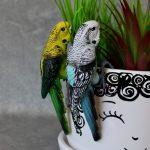 Australian Budgie Bird Pot Sitter 2