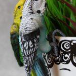 Australian Budgie Bird Pot Sitter 3