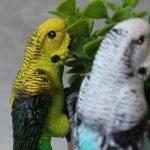 Australian Budgie Bird Pot Sitter 5