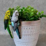 Australian Budgie Bird Pot Sitters