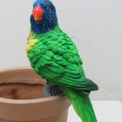 Bird Pot Sitter - Australian Lorikeet Parrot