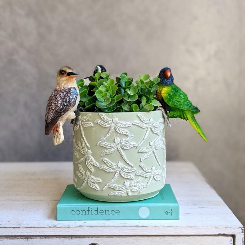 Magpie Kookaburra Lorikeet Bird Pot Sitter - Set of 3