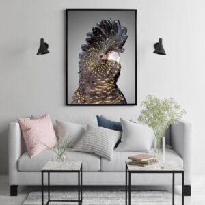 Black Cockatoo Side Grunge Framed Canvas Print Wall Art