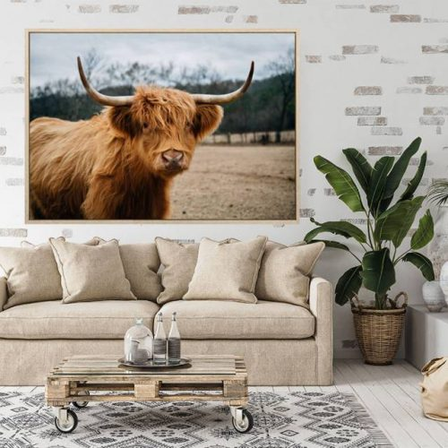 Brown Scottish Highland Cow Framed Canvas Print Wall Art