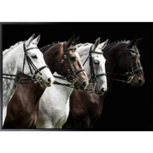 Four Horses Framed Canvas Print Wall Art - Set of 2