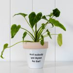 Funny Ceramic Thyme Pot Planter with Quote