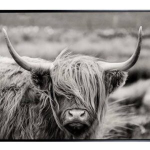 Grey Scottish Highland Cow Framed Canvas Print Wall Art