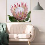 Protea Flower Framed Canvas Print Wall Art_1