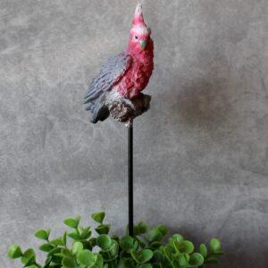 Australian Pink Galah Bird Pot Planter Sitter