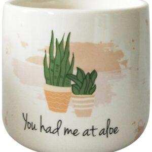 Aloe Quote Ceramic Planter