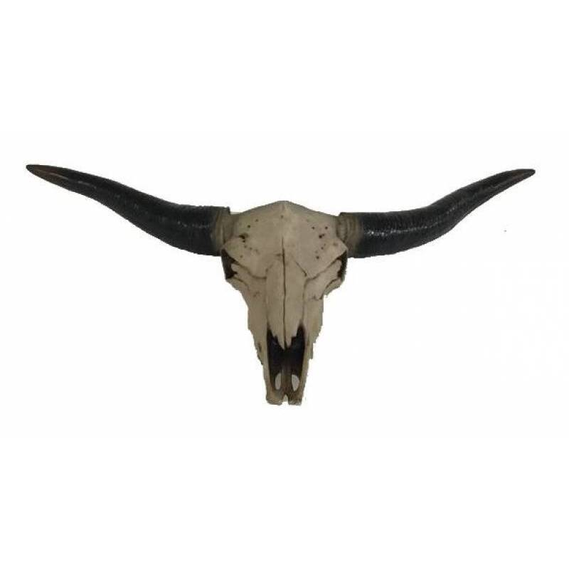 Boho Cow Skull Head Statue Wall Hanging