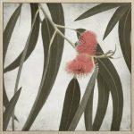 Eucalyptus Flower Framed Canvas Print Wall Art