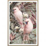 Pink Cockatoo Bird Framed Canvas Print Wall Art