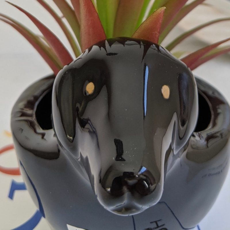 Black French Basset Hound Dog Ceramic Pot Planter