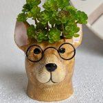 Dog Head With Glasses Ceramic Pot Planter