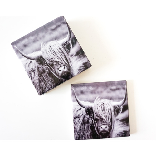 Scottish Highland Cow Ceramic Drink Coasters - Set of 4