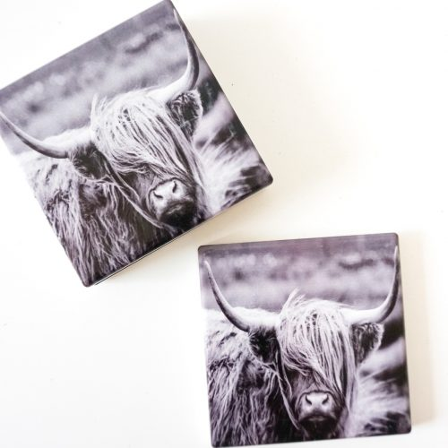 Scottish Highland Cow Ceramic Drink Coasters - Set of4_c