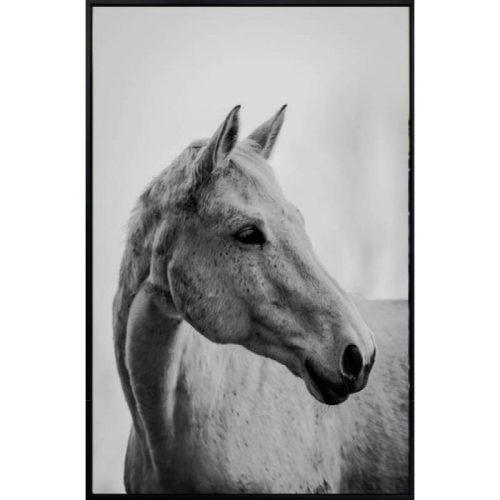 Set of 2 Horse Framed Canvas Print Wall Art