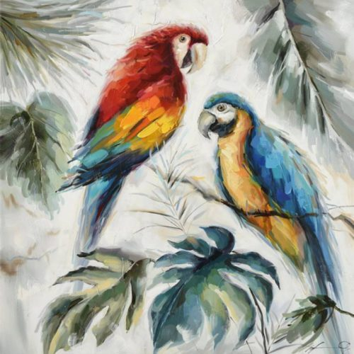 Parrot Bird Duo Framed Canvas Print Wall Art