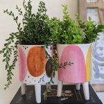 Set of 2 Spotty Pink Ceramic Planter