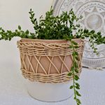 Woven Natural Cane Ceramic Pot Planter