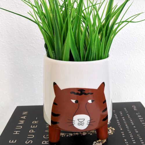 Blue Orange Tiger Face Ceramic Pot Planter