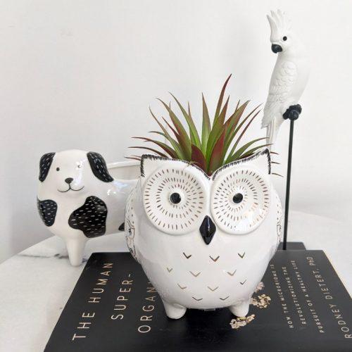 Golden Black White Owl Ceramic Pot Planter
