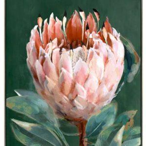 Pink Green Protea Flower Framed Canvas Wall Art