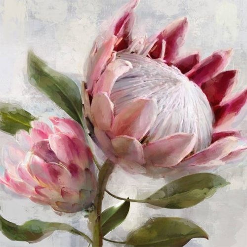 Pink Protea Bud Flower Framed Canvas Print Wall Art