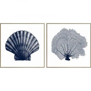 Set of 2 Hamptons Shell Coral Framed Canvas Wall Art