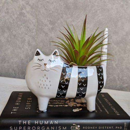 Black Stripes Cat Ceramic Planter Pot