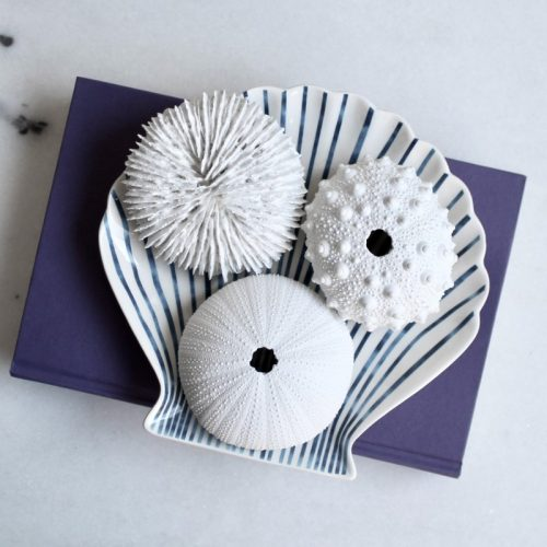 Coastal White Urchin Decor Ornament - Set of 3