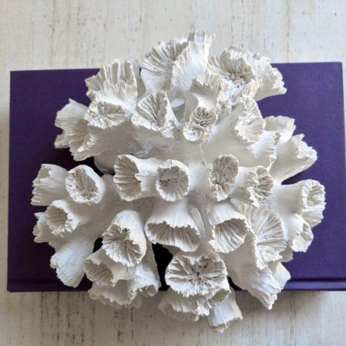 Coastal White Faux Coral Decor Ornament