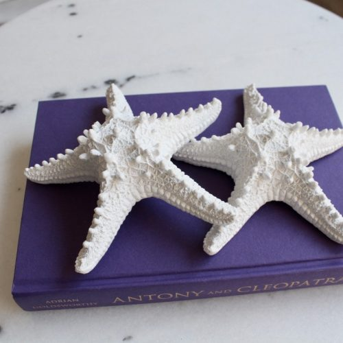 Coastal White Starfish Decor Ornament - Set of 2