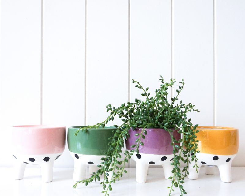 Band and Spots Ceramic Footed Pot Planter